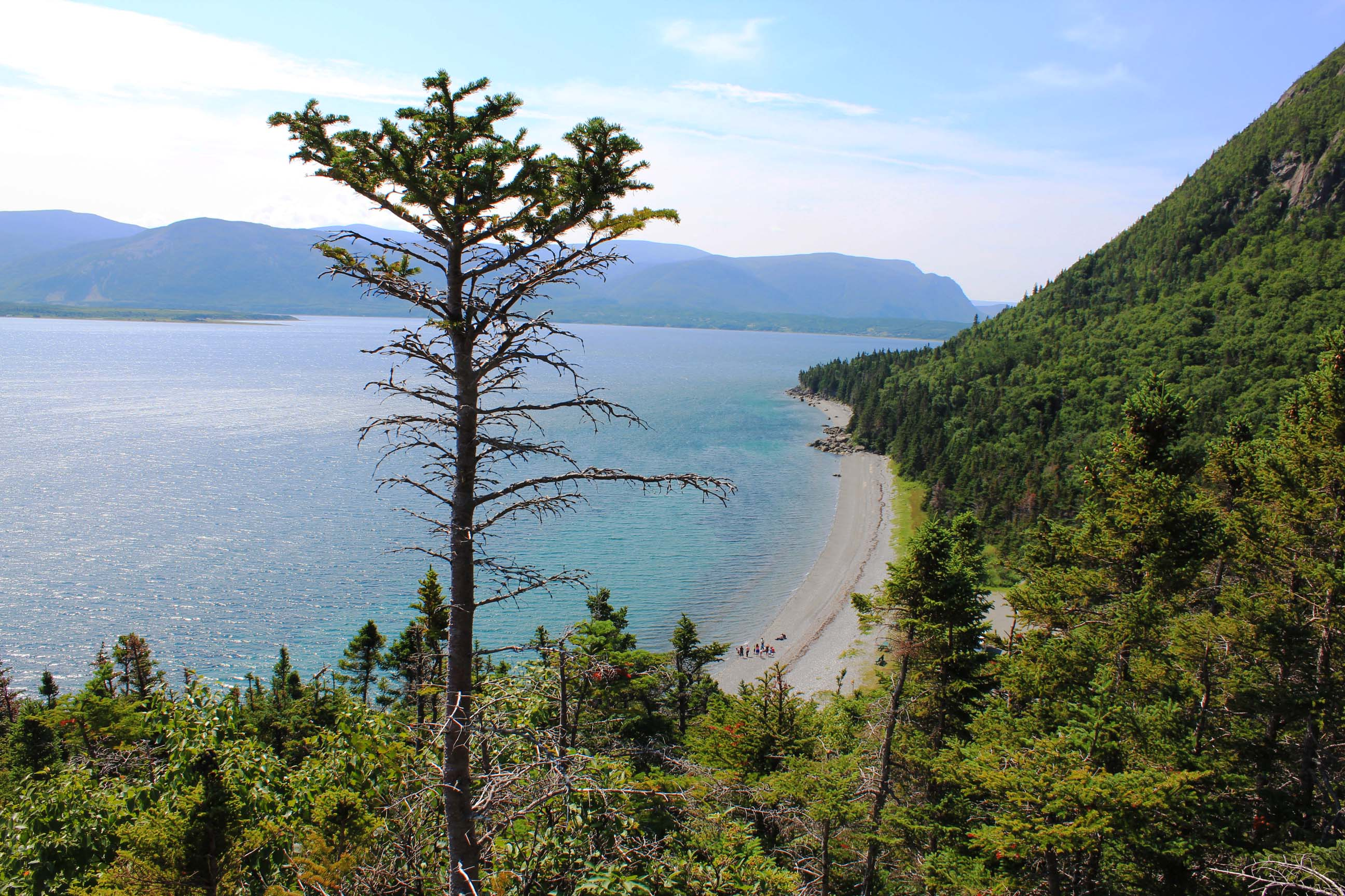 2014- Le voyage jusqu'à Terre-Neuve et le Parc provincial Blow me down