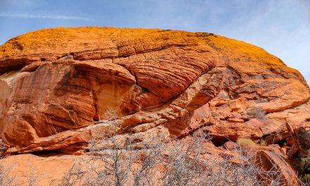 Hiver 2019 – Red Rock et Las Vegas