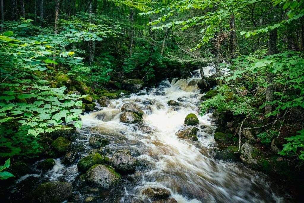 Cascades dans le sentier Le Draveur sud