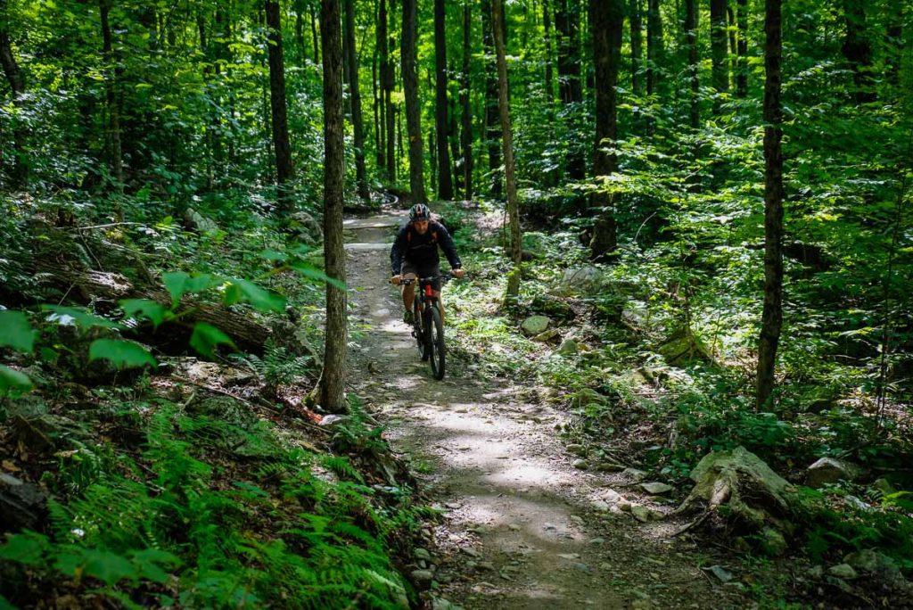 Dans le sentier de vélo de montagne La Chanterelle