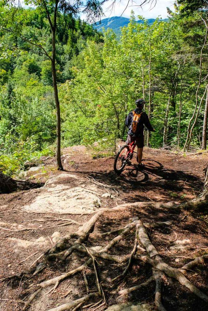 Dans le sentier de vélo de montagne L'Amanite
