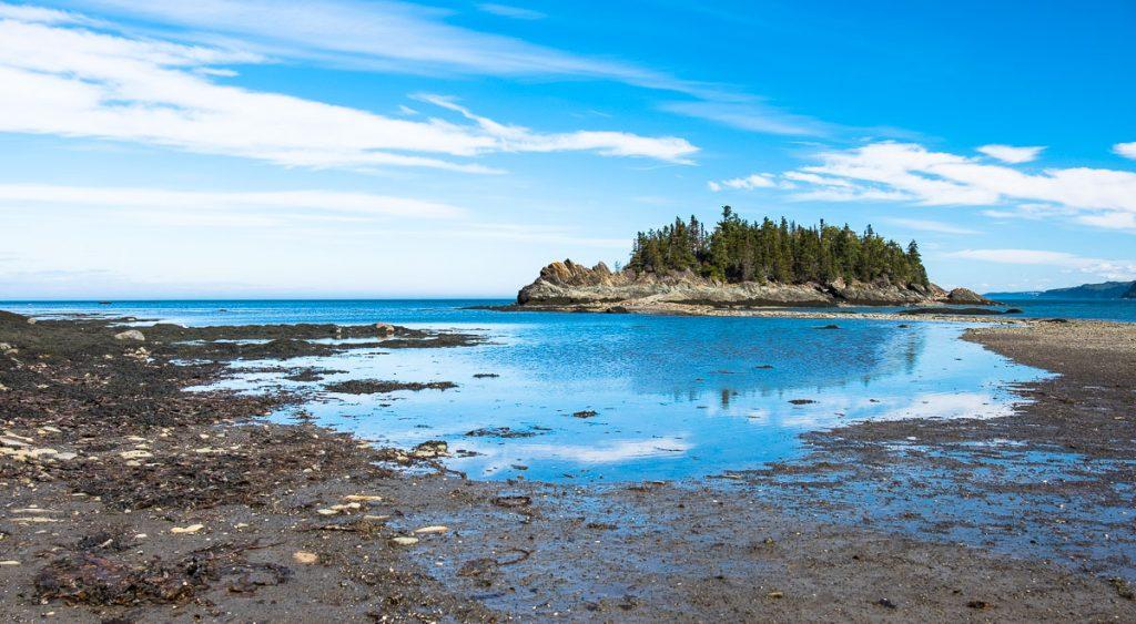 Île aux Canards