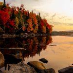 Été 2020 – Parc national de Frontenac
